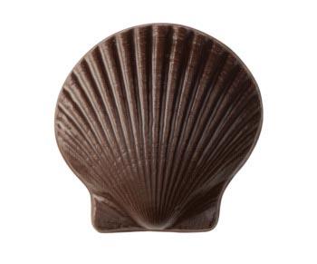 Sweet Shells