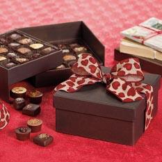 Salt & Ayre Gift Box - 32 Pc